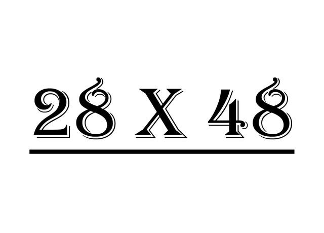 Серия 28 х 48