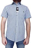 Мужская рубашка F&F (сток, б/у) original с коротким рукавом, в клетку