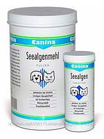 Canina Seealgen Pulver витамины для собак и кошек, 250 гр.