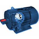 Электродвигатели трехфазные асинхронные взрывозащищенные типа 1ВАО-450