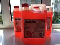 Моющее средство для посуды Ludwik