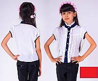 Школьная блуза Рюшик 2