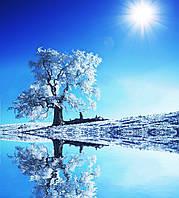 Фотообои Яркое солнце