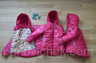 Детская куртка для девочки весенняя Украина