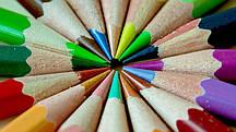 Фотообои Праздник цвета