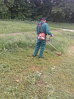 Скос травы Киев. Скашивание травы. Покосить, выкосить траву. Услуги покоса травы, бурьяна. Удаление зарослей., фото 1