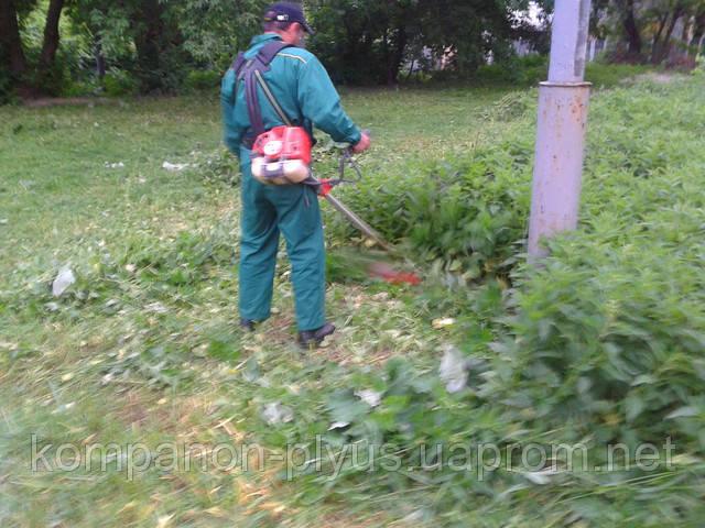 Скос травы Киев. Скашивание травы. Покосить, выкосить траву. Услуги покоса травы, бурьяна. Удаление зарослей. Расчистка участков.покос травы, скос травы, скосить траву, стрижка травы, покосить траву на участке, стрижка газонов, удаление бурьянов на участке, стрижка газонной травы, подстричь траву, стрижка мелкой растительности, поросли вишни, удалить бурьян, покос травы цены, покос травы стомость