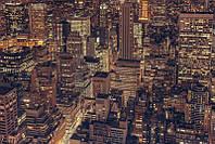 Фотообои Городские джунгли