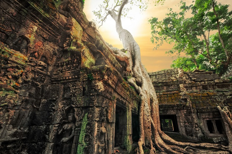 Фотообои Ангкор-Ват