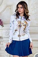 Женская кофта на молнии с длинным рукавом и карманами принт Котенок