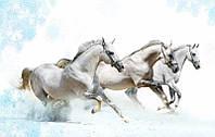 Фотообои Белая тройка