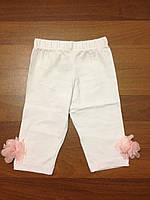 Детская  одежда оптом Лосины для девочек оптом, фото 1
