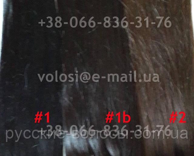 Волосся на заколках 1, 1b, 2