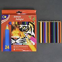 Карандаши цветные 01376 (120) 24шт в упаковке, 24 цвета