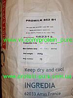 Казеин мицеллярный Ingredia 85 (France) молочный изолят