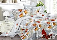 Семейный комплект постельного белья XHY830