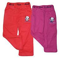 Спортивные штаны для девочек оптом, Grace, 6-36 мес.,  № G2257, фото 1