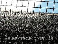 Сетка канилированная яч.50х50мм, д.4мм