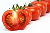 Нужно ли замачивать семена помидоров