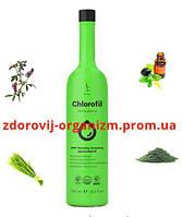 Хлорофилл питьевой DuoLife