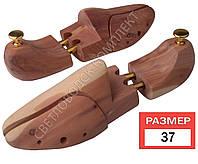 Колодка для обуви кедровая, тип 2 (размеры 37-46) 37