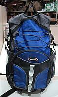 Рюкзак с ортопедической спинкой. Цвет красный, синий