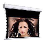 Проекционный экран Adeo Screen Professional Tensio Reference White 308 х 174 см экран с мотором формат 16:9