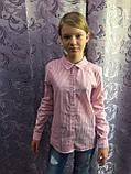 Коттоновая рубашка для девочки в мелкую полоску 134,140,146 см, фото 2