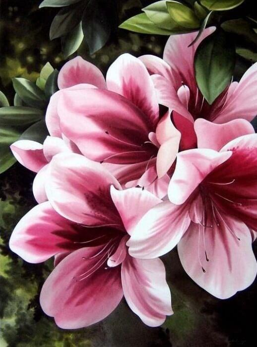 Картина по номерам Розовая лилия КНО2911 Идейка