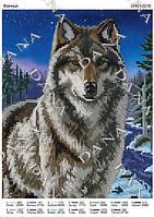 Схема для вышивания бисером DANA Волчица 2216