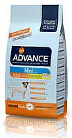 Advance (Эдванс) Dog Mini Adult (7.5 кг) корм для взрослых собак маленьких пород с курицей и рисом