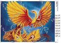 Схема для вышивания бисером DANA Жар-птица  2112