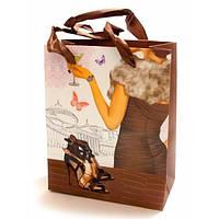 Пакет картонный подарочный Туфельки