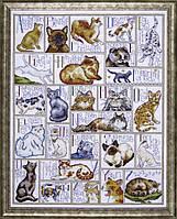 """Набор для вышивания крестом """"ABC Cats//Кошачий алфавит"""" Design Works • dw2701"""