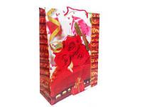 Пакет подарочный полиэтиленовый 24см 18см (12 шт)
