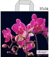 """Пакеты """"петля"""" 37см 34см 95мк Орхидея Джерела (25 шт)"""