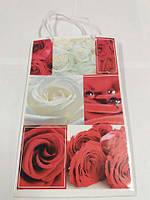 Пакет подарочный бумажный Средний 17см 26см (12 шт)