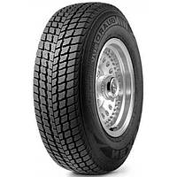 Зимние шины Roadstone Winguard 225/55 R16 99H XL