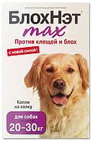 БлохНэт max капли против клещей и блох для собак от 20 до 30 кг, Астрафарм