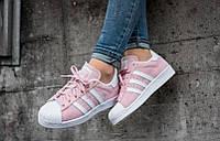 Adidas Superstar Rose Blanc