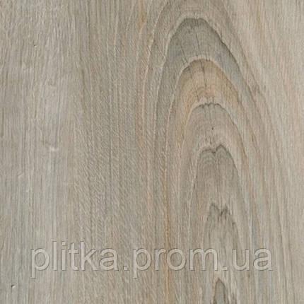 Ламінат EPI Alsafloor Clip 400 Elegant Grey Oak 128.60 x 19.20, фото 2