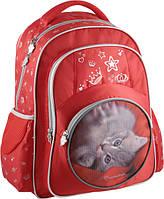 Рюкзак школьный KITE 2014 Rachael Hale