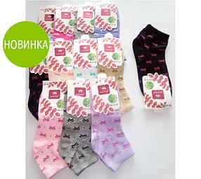Удобные женские носки с рисунком, нарядные / красивие носки в мелкие бантики, яркие, мягкие  37-42