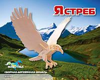 """Деревянный 3d пазл МДИ """"Ястреб"""""""