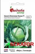 Семена капусты белокачанной позднеспелой Леннокс F1 20 семян Голландия