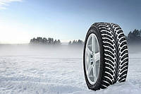 Зимний тест шипованных шин