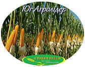 Семена кукурузы НС 2652 ФАО 280 Юг Агролидер