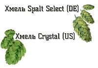 Новое поступление: Хмель Spalt Select (DE) и Crystal (US)