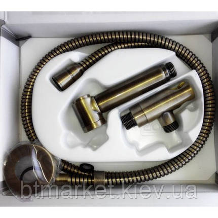 Душевой гарнитур Bossini ALEXA-BRASS C69004B бронза, фото 2