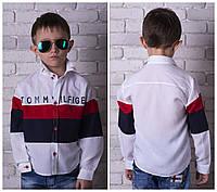 Стильная рубашка Tommy для мальчика,хлопок,высокое качество пошива